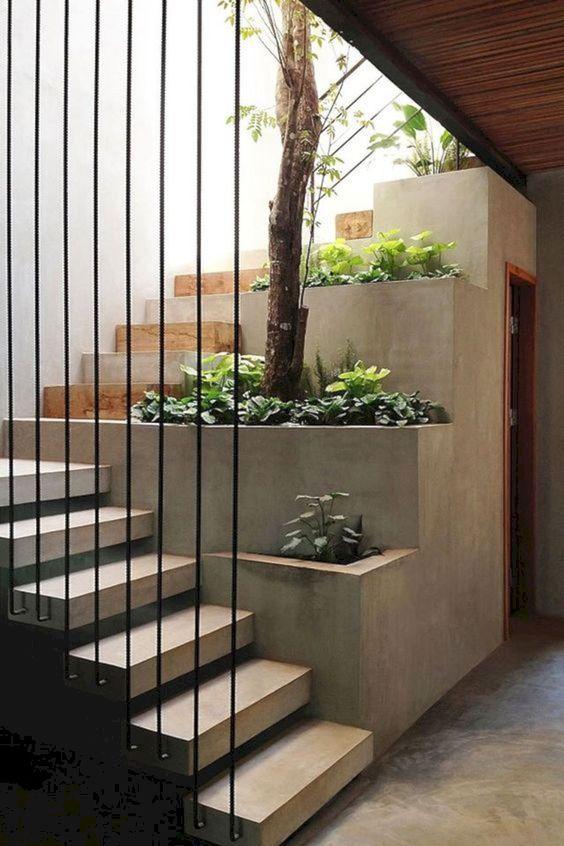 کاربرد گیاهان در طراحی داخلی