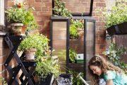 بام سبز،اهمیت بام سبز در بازسازی خانه