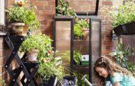 بام سبز(روف گاردن) Roof Garden ضرورتی برای شهرسازی مدرن
