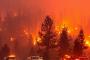 تخلیه اجباری مناطق مختلف کالیفرنیا به علت آتشسوزی +عکس - نیوز